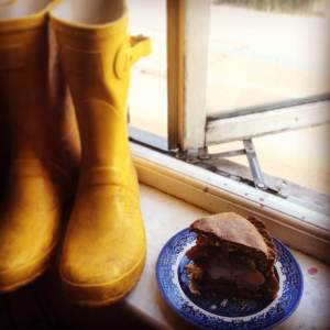 These are my wellies. They are drying from a canal adventure.